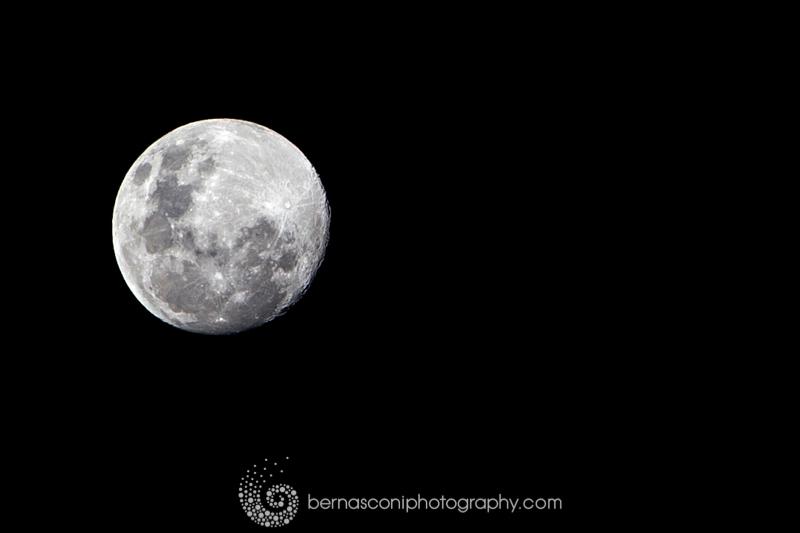 This shot was taken on 21/7/13 in Sydney, Australia. ISO 100 Aperture F11, S/speed 1/125