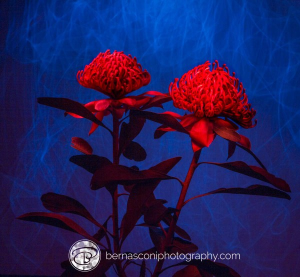 Painting the flowers with red torch light and adding a 'moving light' background.